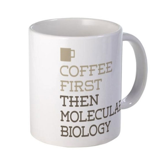 Coffee First Then Molecular Biology Mug